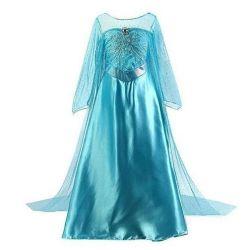 Elsa's Frozen Dress with a Train