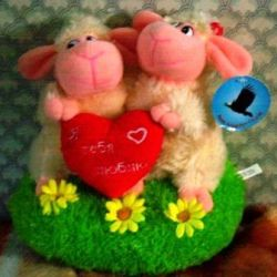 Lambs with music - congratulation of lovers