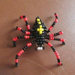 Αράχνες χάντρα