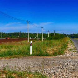 12 hectare plot