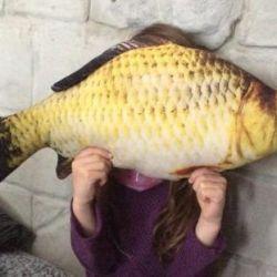 Cuib pește, (nou)
