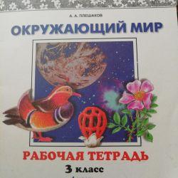The world around Pleshakov, workbook grade 3