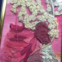 Pictures of dried flowers