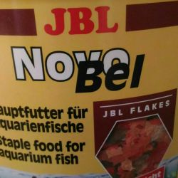 Fish food live, dry, brine shrimp, frozen