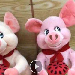 soft musical pig