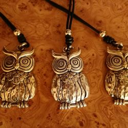 Jewelry on the neck owl