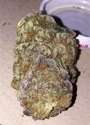 Order Black Russian weed from us.