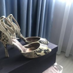 Just Cavalli shoes reptile shoes