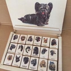 Dogs matchboxes of times of the USSR