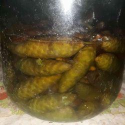Miez de conuri de molid