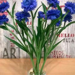 Fransa'ya dekoratif çiçekler.