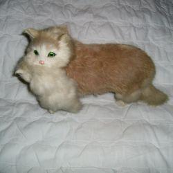 Cat carries a kitten.