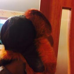 Winter fox fur hat