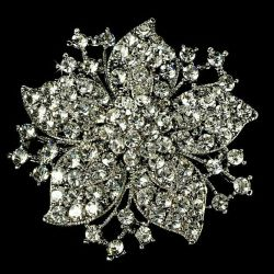Gorgeous brooch