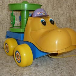 Hippo, wheelchair