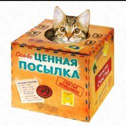 Котенок в подарочной Коробке