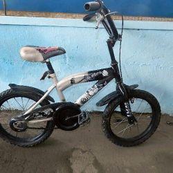 Bike Cortes Green