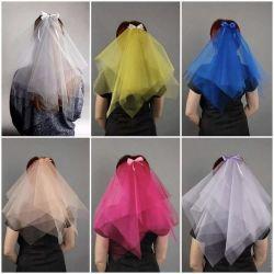 Veil at a bachelorette party