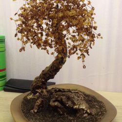 Arbore copac
