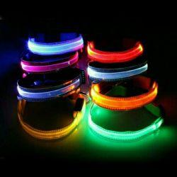 Glowing Collar