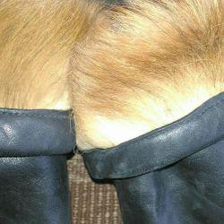 Θεραπευτικές μπότες, γούνα σκύλου, δέρμα
