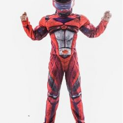 Carnival costume of the Mighty Ranger