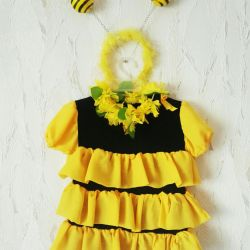 Bee costume for hire