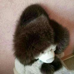 Cap Arctic fox