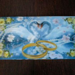 Postcard envelope