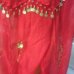 Costume for oriental dance.