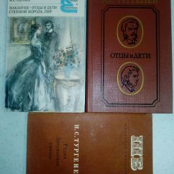 10 класс - Книги И.С.Тургенева