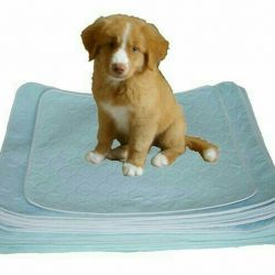 Disposable diapers for dogs 60х90