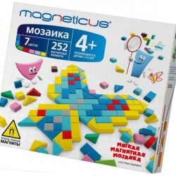 1 mosaic Magneticus 252 pcs.