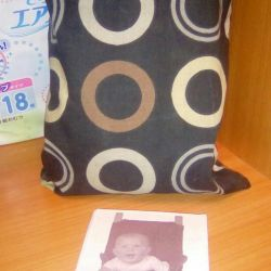 Totseat new (highchair)