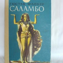 Mr. Flaubert Salambo