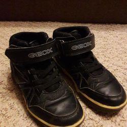 Ben spor ayakkabı şirketi Geox vereceğim