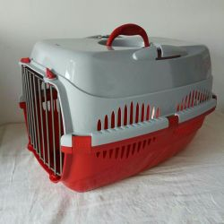 Bright carry box for transporting animals