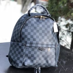 🎒 Backpack Louis Vuitton