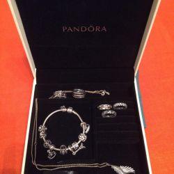 Hard Case Pandora