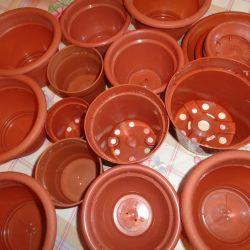 Pots under the flowers