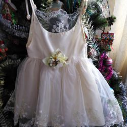 Beautiful dress for the little princess5