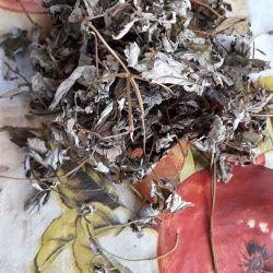 Frunze uscate de zmeură