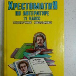 Cititor în literatură