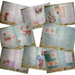 O carte pentru femeile însărcinate și părinții pentru a ajuta copilul