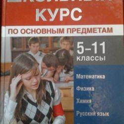 Curs de școlarizare în discipline de bază 5-11 clase + CD