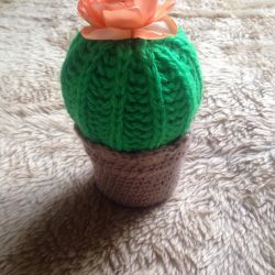 Knitted toy cactus