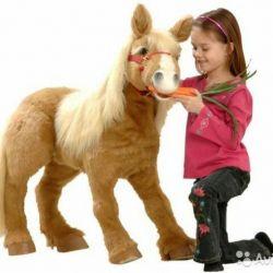 Pony Toffee interactive