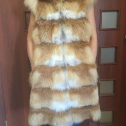Fox vesta