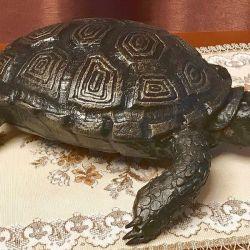 Metal kaplumbağa