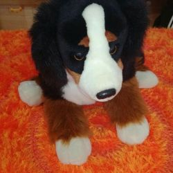 Soft toy big Dog Torg!